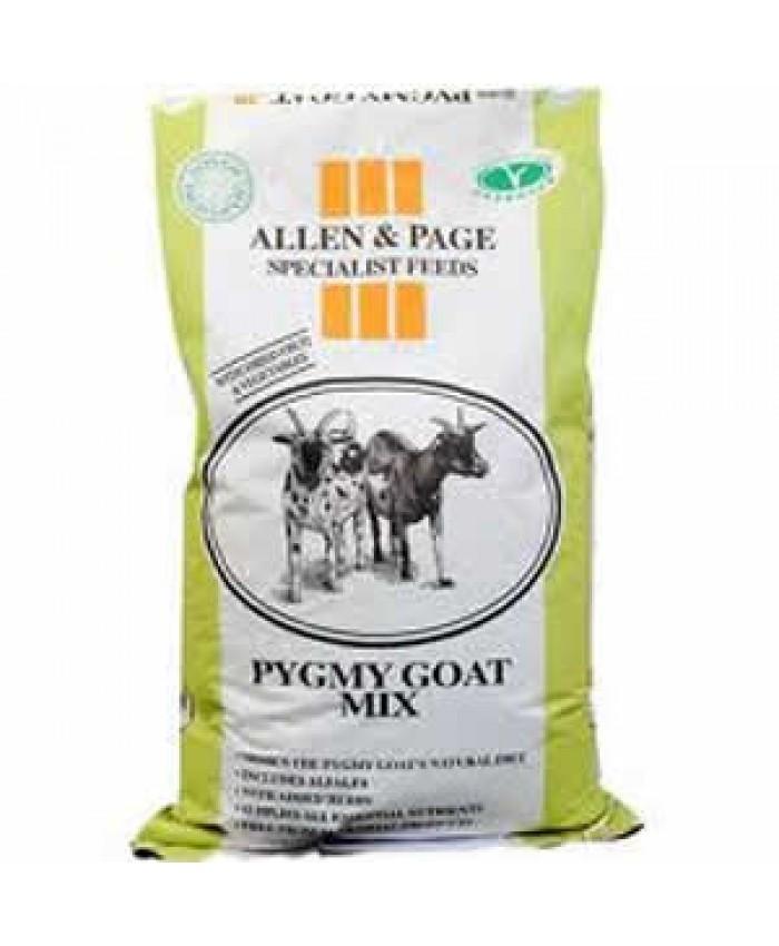 Allen & Page Pygmy Goat