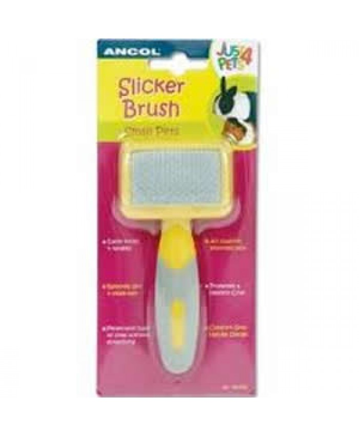 Ancol Small Pet Slicker Brush