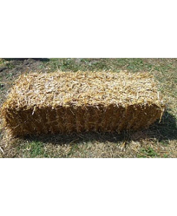 Bale Straw (Flat 10)