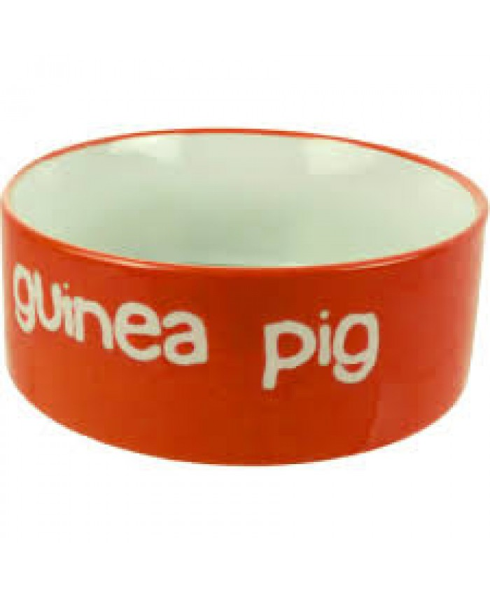 Bright Guinea Pig Feeding Bowl