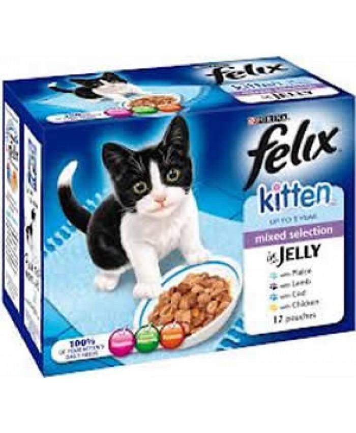 Felix Kitten Mixed Variety in Jelly