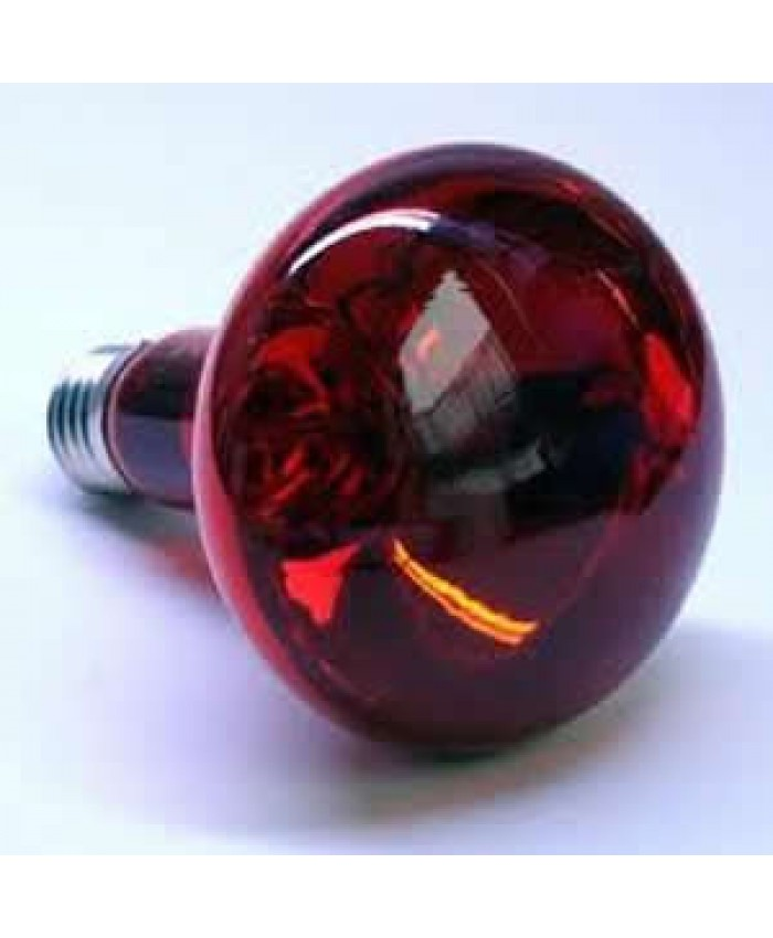 Infrared Heat Bulbs 150W
