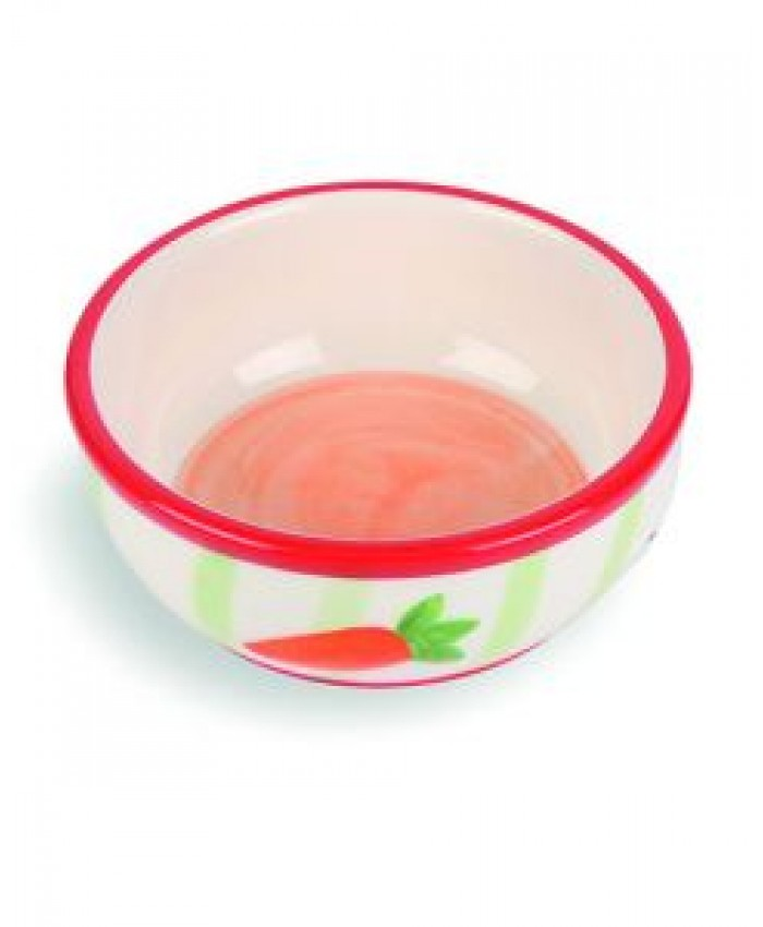 Carrot Stripe Pet Bowl