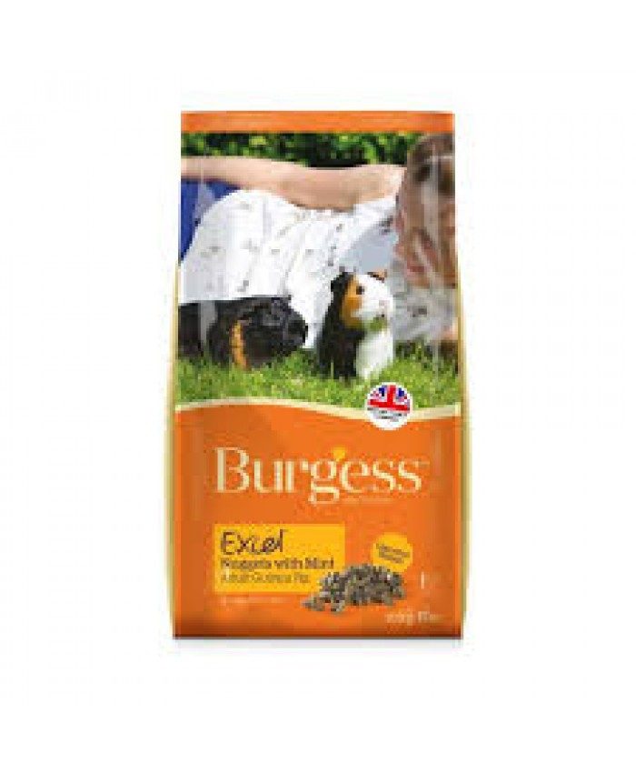 Burgess Excel Tasty Nuggets Guinea