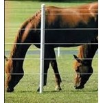 Stable, Yard And Field